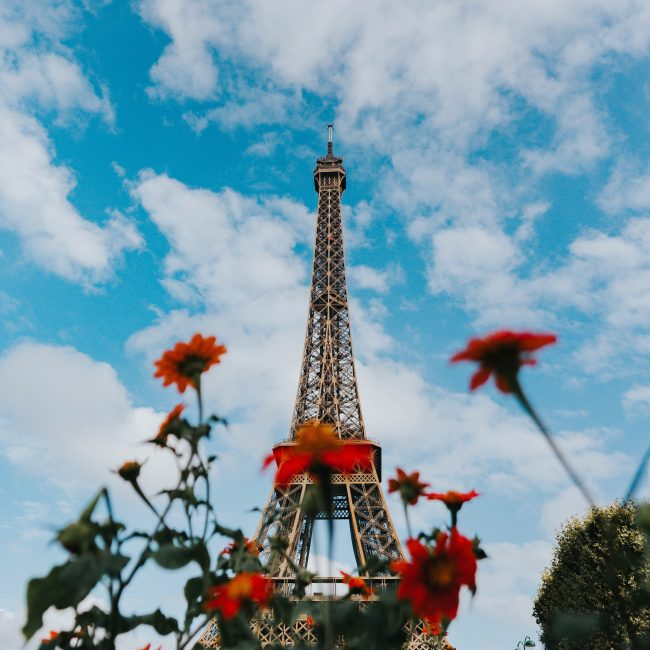 eiffel-tower-flowers